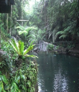 Bato Springs 1